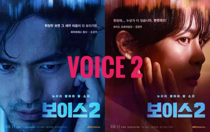 Download Drama Korea Voice 2 Batch Subtitle Indonesia