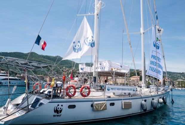 «Blue Panda»: Το ιστιοπλοϊκό του WWF ταξιδεύει στη Μεσόγειο