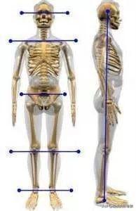 長期久坐,如何讓身體回到相對中立的位置(過勞損)