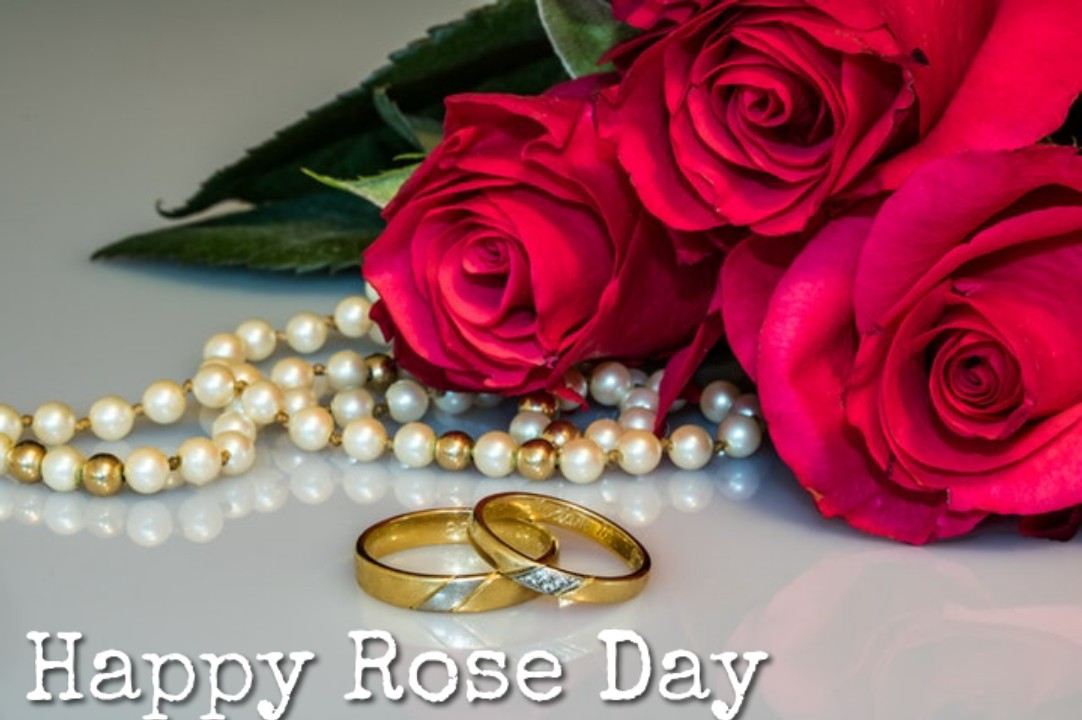 Happy Rose Day 2020 Images Download In Hd Best 10