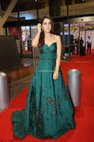 Raashi Khanna in Dark Green Sleeveless Strapless Deep neck Gown at 64th Jio Filmfare Awards South ~  Exclusive 162.JPG