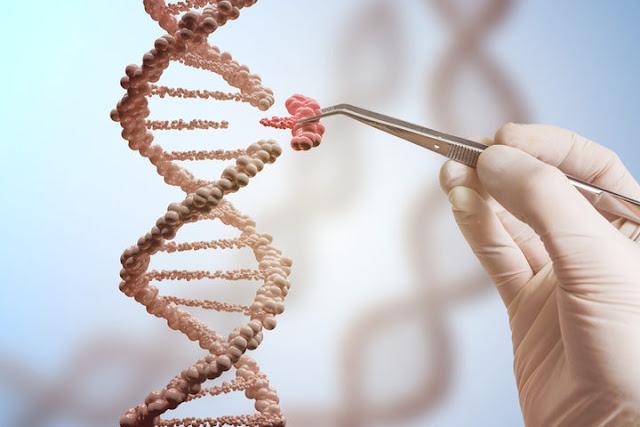 """Sanità, Manca: """"Esame genetico è una forma di prevenzione preziosa, bene mozione per esentare visite diagnostiche alle donne positive al test"""""""