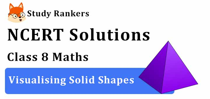 NCERT Solutions for Class 8 Maths Chapter 10 Visualising Solid Shapes