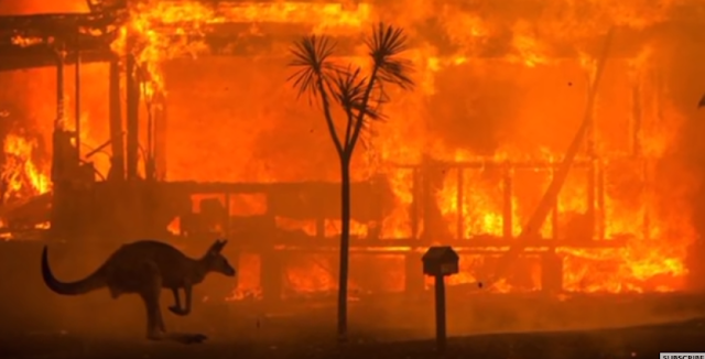 australia fire forest,fire on australia