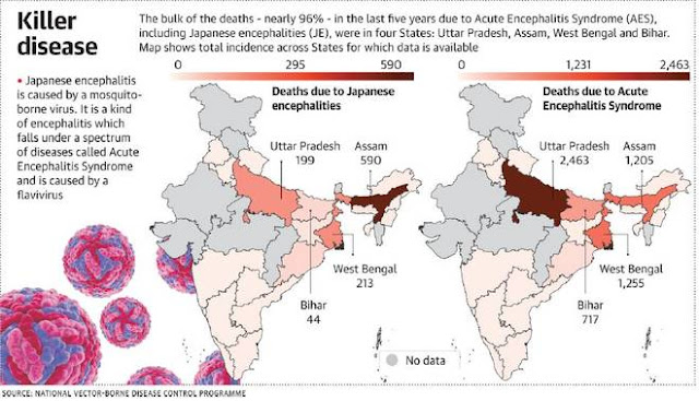 Areas affected by Encephalitis in india (2019), www.arvbiotech.com