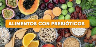 Definición prebióticos alimentación