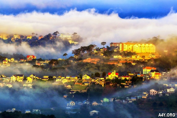 Đà Lạt mù sương