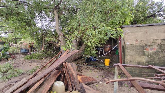 Más de 80 casas destechadas en Juan de Acosta por intensa lluvia y fuertes vientos