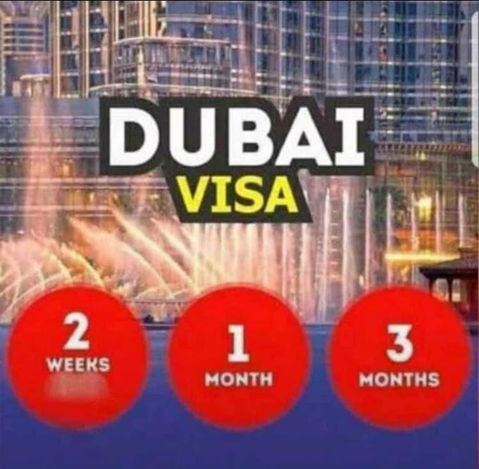 Meet us for your legit Dubai paper arrangement....