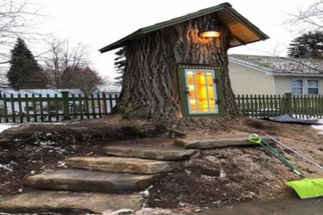 जब एक महिला ने बनाई 110 साल पुराने पेड़ में लाइब्रेरी... - newsonfloor.com