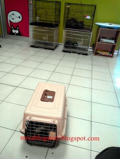 Klinik Haiwan