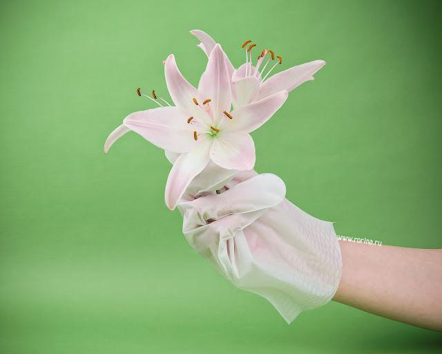Увлажняющая маска-перчатки для рук: отзывы с фото