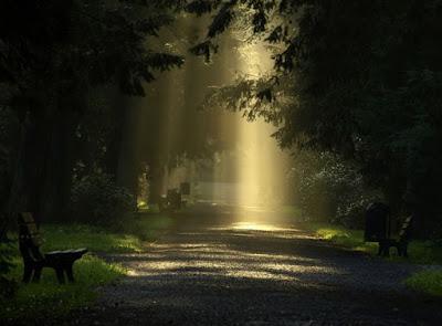 Nature Amazing Pics