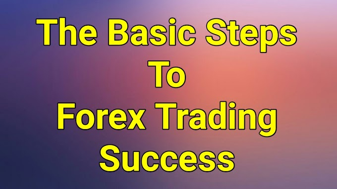Some Top Label Basic Steps To Success in Forex Trading