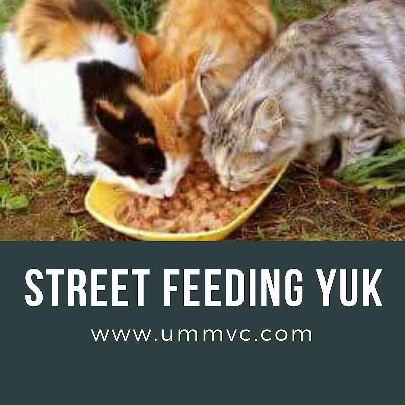 Street Feeding Yuk