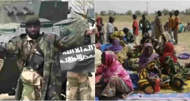Exclusive: Shekau, Boko Haram Commanders reaching out to mediators for a ceasefire