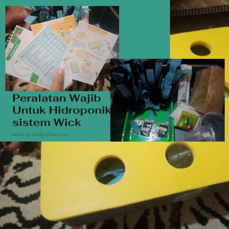 cara mudah hidroponik sistem wick