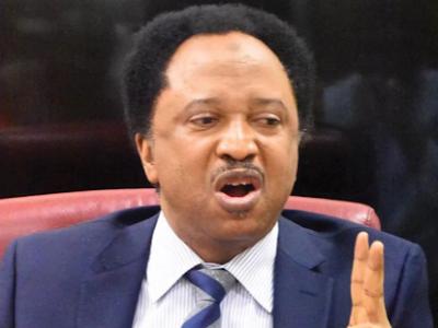 Shehu Sani reacts as Buhari govt engage China over COVID-19 vaccine