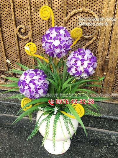 Hoa da pha le o Dan Phuong