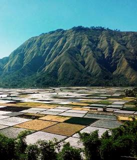 http://www.lomboksociety.com/2019/10/10-ultimate-rinjani-mountain-trekking.html