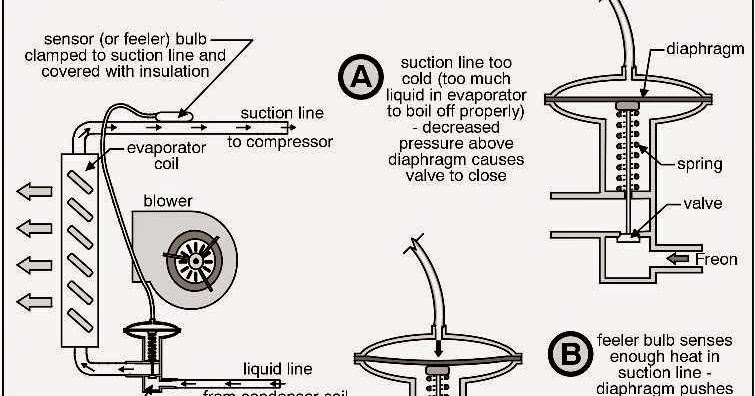Guide to Thermostatic Expansion Valves & Other Refrigerant