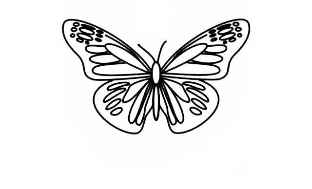 Dibujos Faciles de Mariposas para niños
