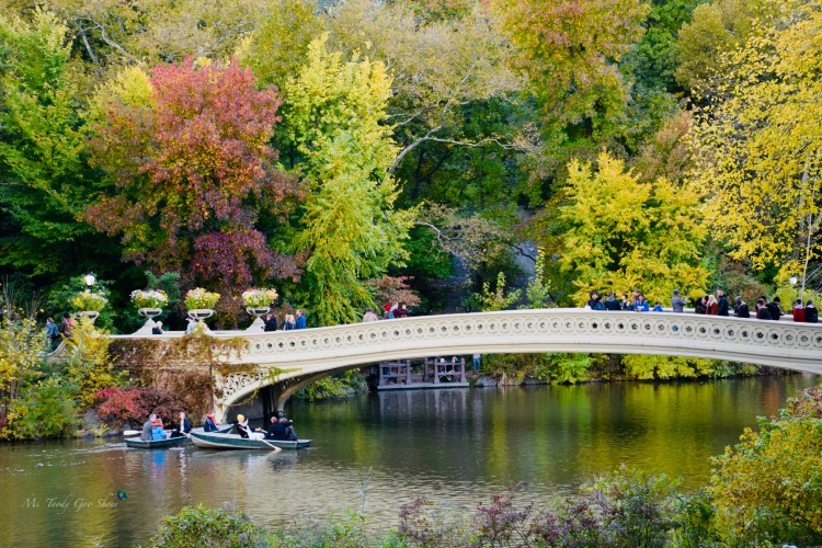 Bow Bridge in Central Park is breathtaking in fall! | Ms. Toody Goo Shoes #NewYorkCity