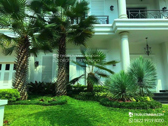 jasa pembuatan taman di bsd Tangerang selatan