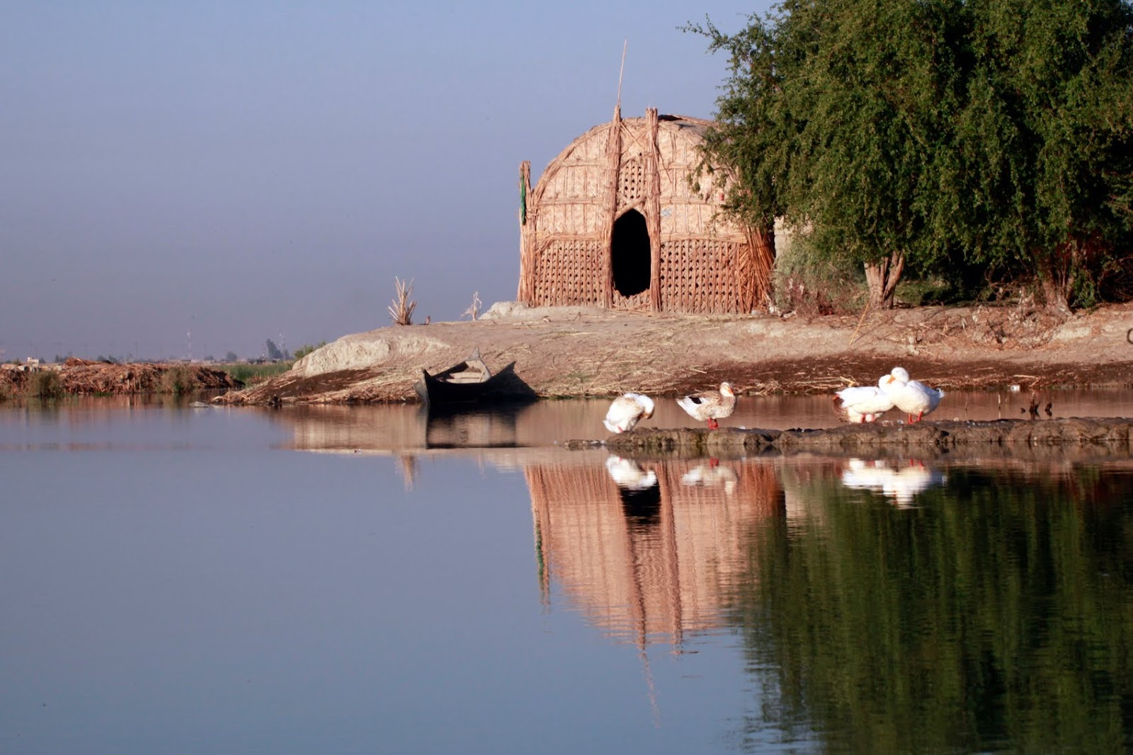 Iraqi marshes threatened