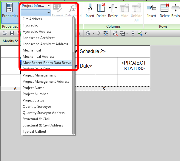 What Revit Wants: Creating a Generic Schedule for Custom