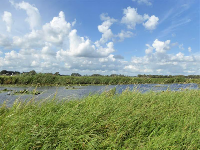 polder del waterland