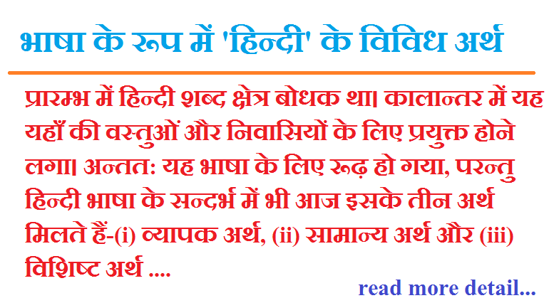 bhasha ke roop mein hindi ke vividh arth