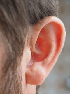 Man's Left Ear