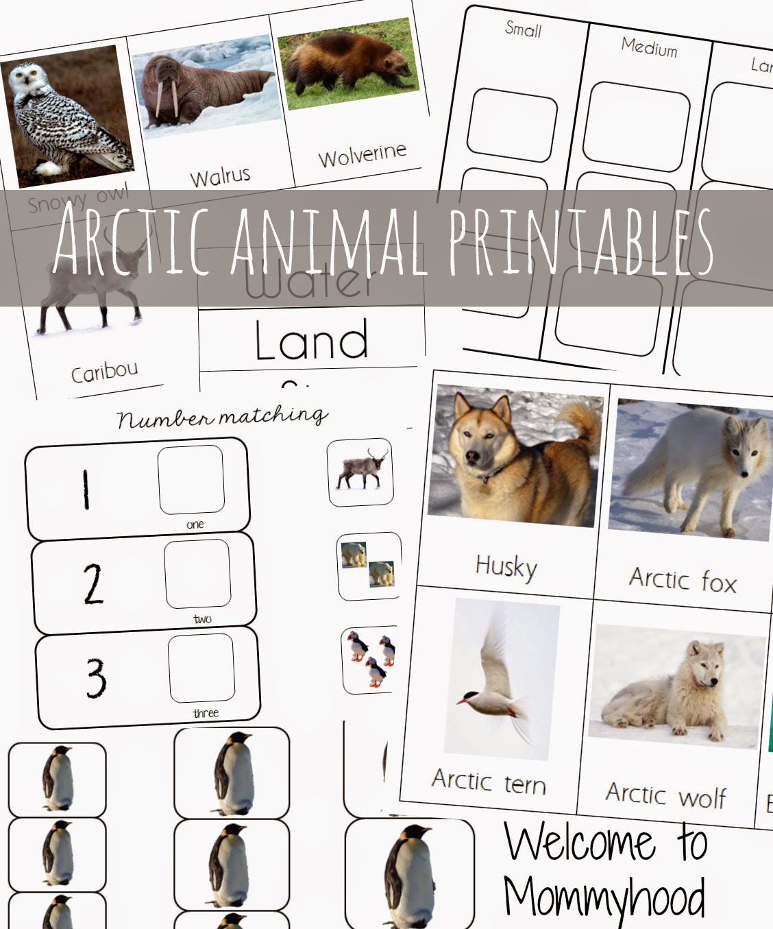 Welcome To Mommyhood Arctic Activities And Free Printables