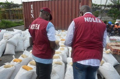 NDLEA destroys 110,542 tons of Indian hemp in Ondo