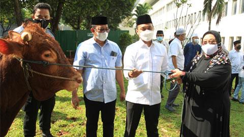 DPD RI Berbagi Hewan Kurban di Momen Idul Adha 1422 H