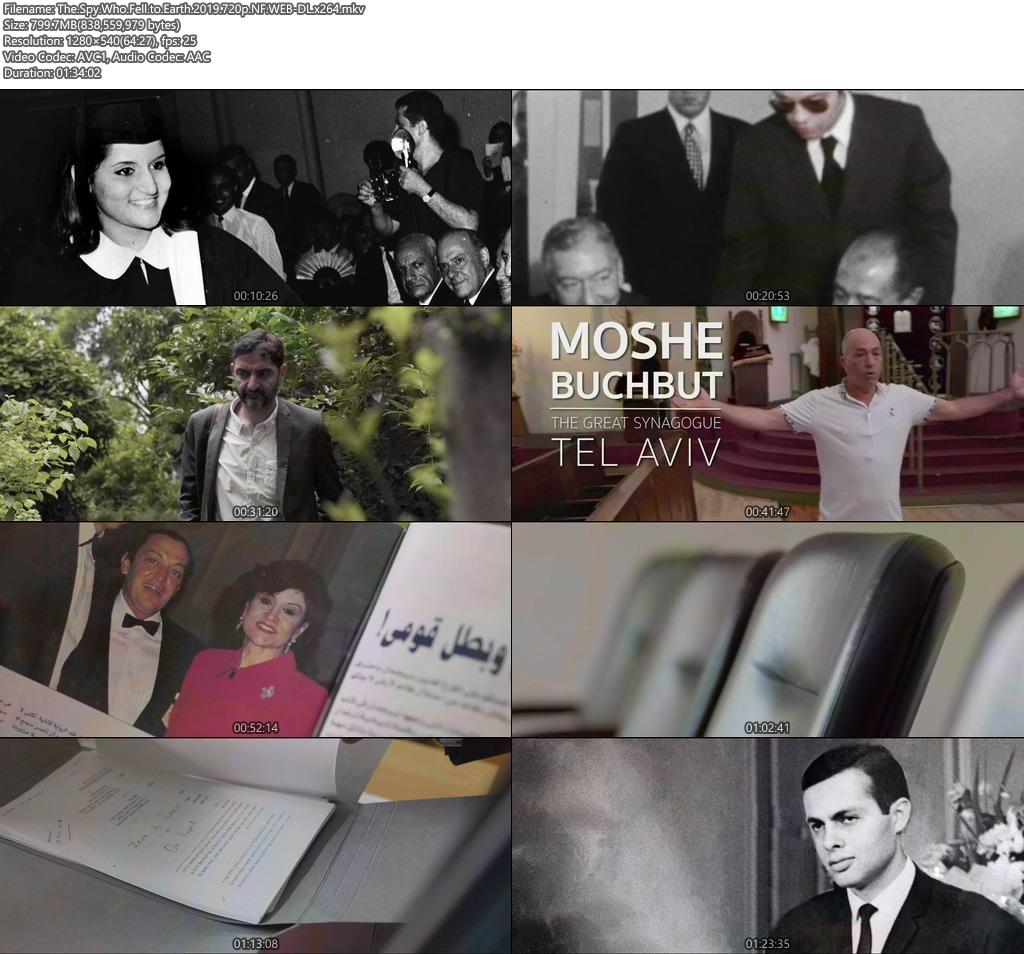 The Spy Who Fell to Earth 2019 720p NF WEB-DL x264 | 480p 300MB | 100MB HEVC Screenshot