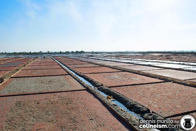 pangasinan salt farm