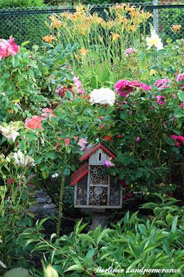 Insektenhotel zwischen Rosen