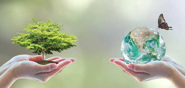 مشروع اثراء المعرض السنوي للمتوسطة بركن حول البيئة