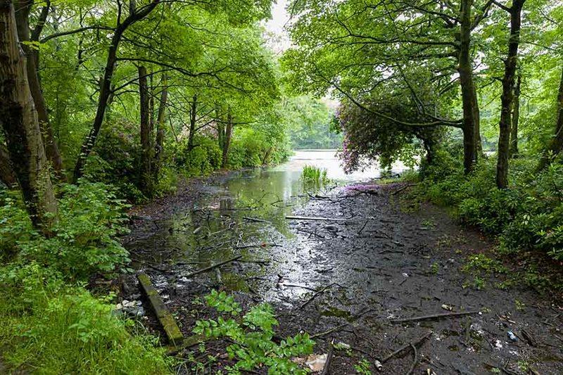 Lago RHS Bridgewater