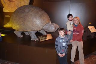 Museo del Hombre y la Naturaleza o Museum Mensch und Natur.