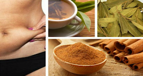 Effective Natural Fat Burner: Melts Belly Fat In Less Than Two Weeks