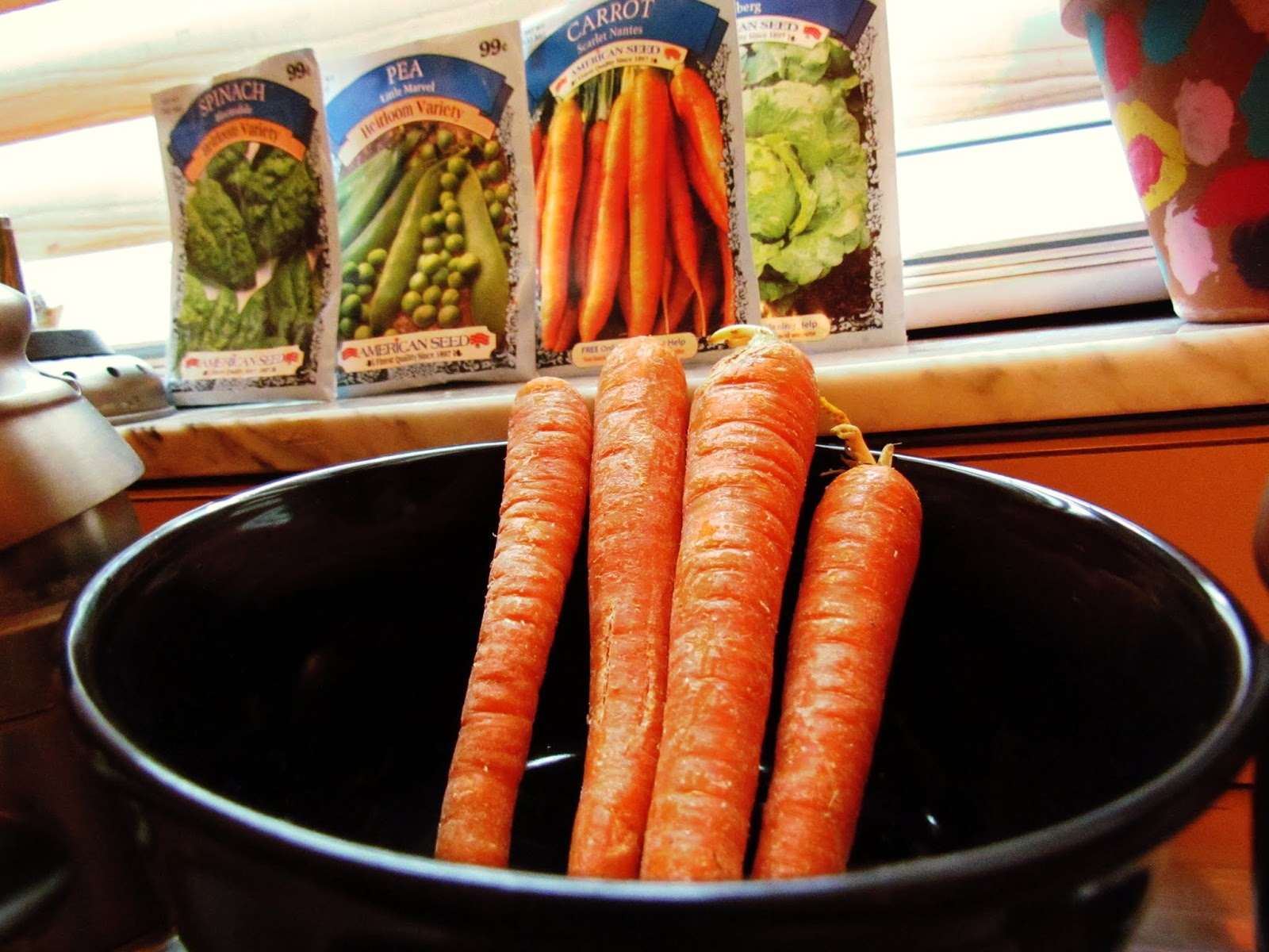Make Sweet Carrot Juice or Organic Carrot Soup Fresh From the Garden