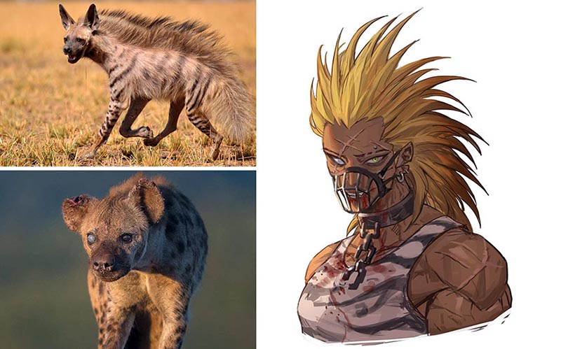 Striped/Spotted Hyena