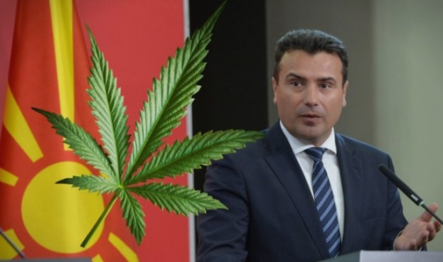 Prime Minister Zoran Zaev supports the legalization of marijuana in order  to increase tourism - Oculus News