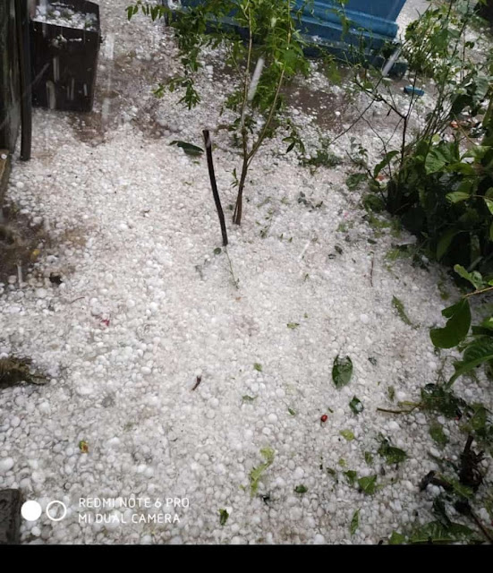 HAILSTORM IN UTTAR PRADESH ,OLE KI BAARISH,LIVE NEWS PRAYAGRAJ
