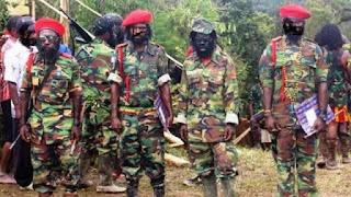 MAKIN MENJADI! OPM Akan Tembak Warga Non-Papua yang tak Mau Tinggalkan Nduga, Ini 7 Ultimatum untuk Indonesia
