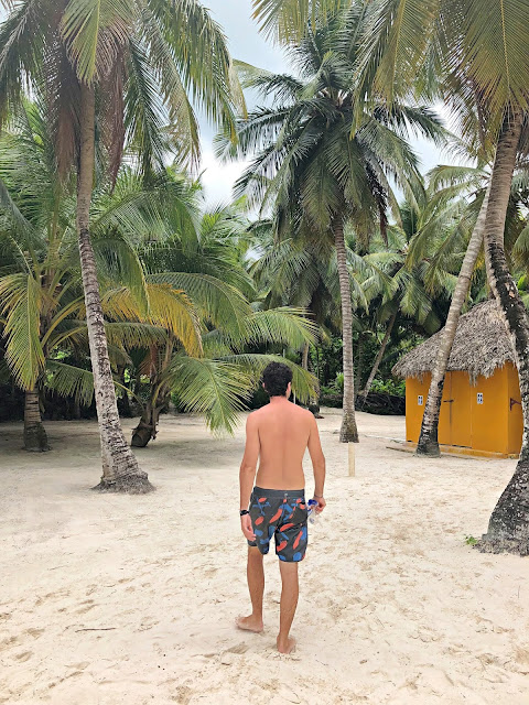 saona île expédition