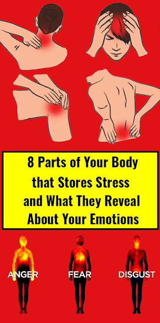 8 Parts of Your Body that Stores Stress and What They Reveal About Your Emotions
